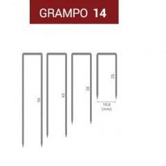 GRAMPO 14